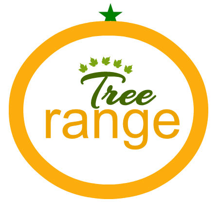 Orange Tree Education